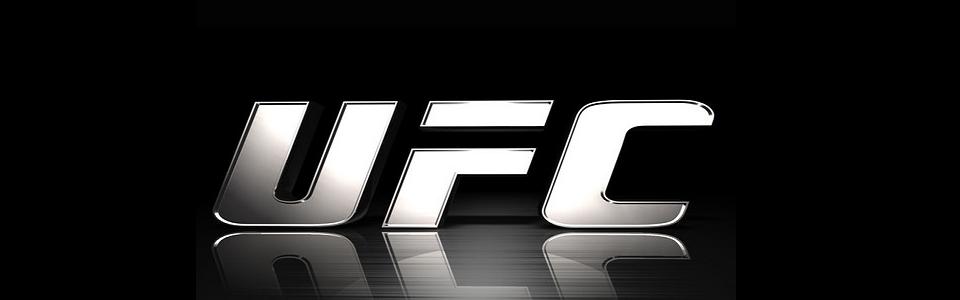 UFC Update