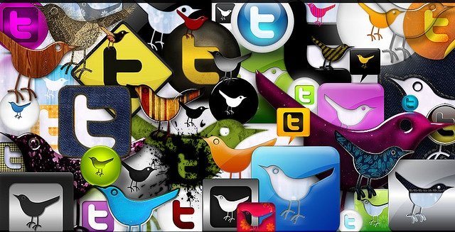 Do you need a Twitter-sitter?