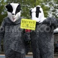 1370249298 march against the badger cull_2111303